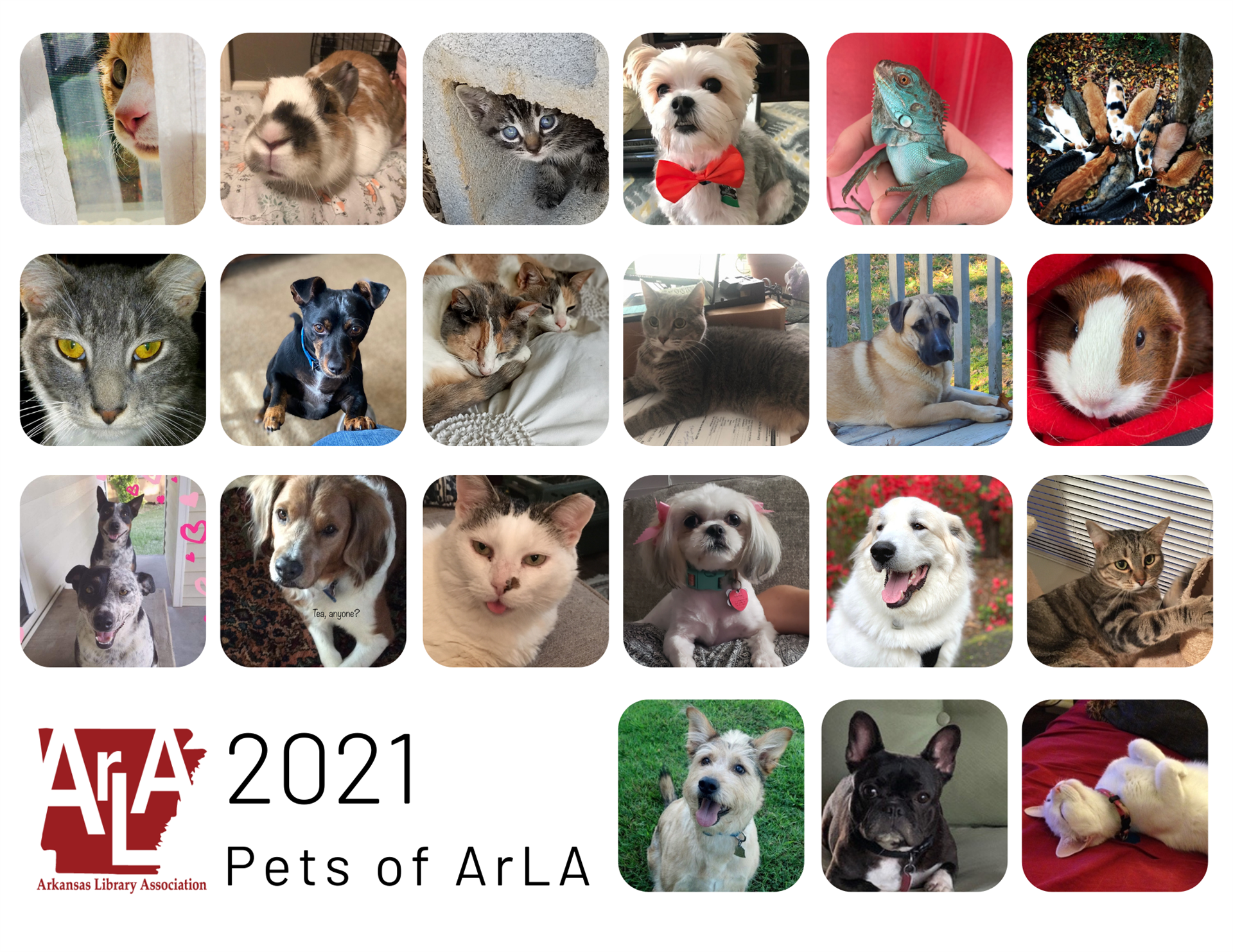 2021 Pets of ArLA Cover